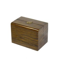 19th Century Caromandle Writing Box